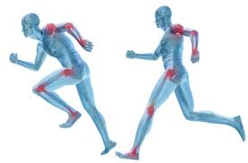 Image result for sport therapy