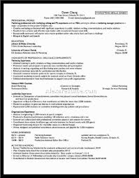 example of perfect resumes template example of perfect resumes