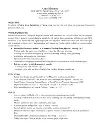 sample pharmacy technician resume objective cipanewsletter cover letter computer technician resume objective computer