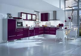 modern kitchen setup:  images about kitchen designs on pinterest restaurant purple kitchen and modern kitchens