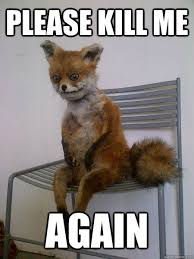 please kill me again - taxidermy the fox - quickmeme via Relatably.com