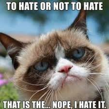Grumpy Cat on Pinterest | Grumpy Cat Christmas, Grumpy Cat Frozen ... via Relatably.com