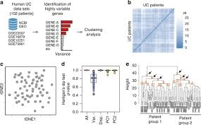 Conserved transcriptomic <b>profile</b> between mouse and <b>human</b> colitis ...