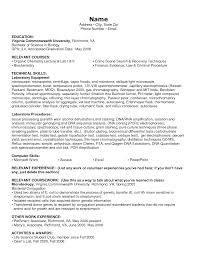 examples of technical skills for resume template examples of technical skills for resume
