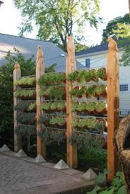 Small Picture Garden Fence Designs Gardening Ideas