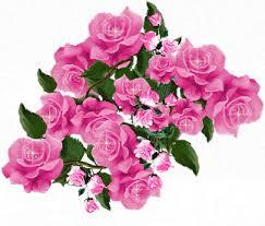 Image result for ?تصاویر متحرک گل های زیبا?