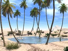 Image result for real desert oasis