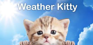 Weather <b>Kitty</b> - Forecast, Radar & <b>Cat</b> Pictures - Apps on Google Play