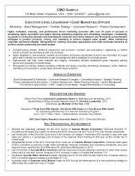 Professional Resume Samples by Julie Walraven  CMRW Inside Sales Resume