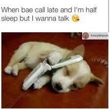 Cute Dog Memes | Kappit via Relatably.com