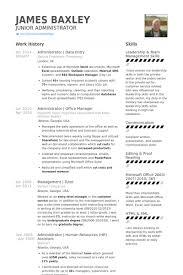data entry resume samples   visualcv resume samples databaseadministrator   data entry resume samples