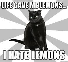 Pessimistic Cat memes | quickmeme via Relatably.com