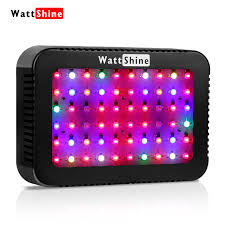WATTSHINE Official Store - Amazing prodcuts with exclusive ...
