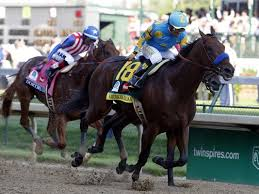 Image result for american pharoah horse derby