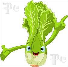 Romaine vs Iceberg: Does the Type of Lettuce you eat matter?