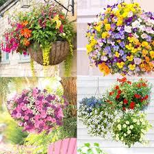 15 Beautiful Flower <b>Hanging</b> Baskets & Best Plant Lists - A Piece Of ...