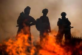Adolescente ateou fogos durante as visitas à avó em Carrazeda de Ansiães