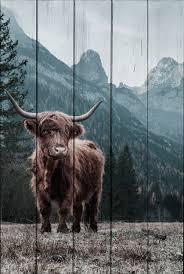Купить <b>картина на дереве Дом</b> Корлеоне Шотландский бык 01 ...