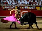 Images & Illustrations of corrida
