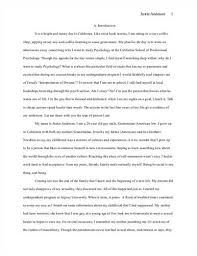 sample essay nursing process   drugerreportwebfccom sample essay nursing process