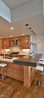 Contemporary Galley Kitchen Unbelievable Contemporary Galley Kitchen Images Concept Decoration