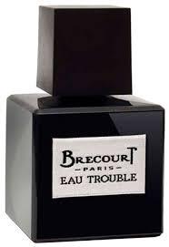 Купить <b>Парфюмерная вода Brecourt Eau</b> Trouble, 50 мл по низкой ...
