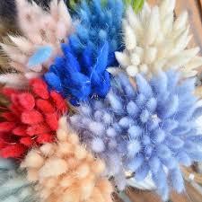 <b>30Pcs Rabbit Tail</b> Grass <b>Natural</b> Dried Flowers For Home ...