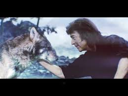 <b>Steve Hackett</b> - <b>Wolflight</b> - FabricationsHQ - Putting the Words to the ...