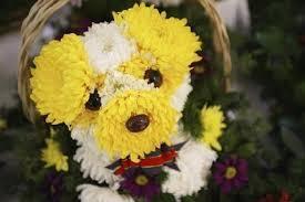 Ένα λουλουδένιο σκυλάκι...
