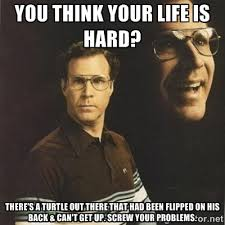 You think your life is hard? There's a turtle out there that had ... via Relatably.com