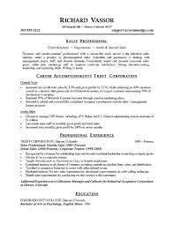 Example Resume  Good Sales Objective For Resume With Professional Experience And Education Also Sales Professional