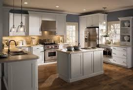 plastic laminate kitchen cabinets flooring