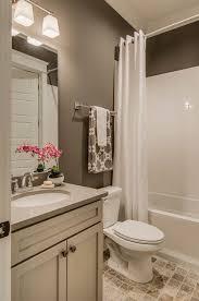 bathroom tile and paint ideas