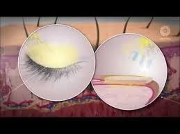 SESDERMA | Professionaalse kosmeetika veebipood. Ilutooted ...