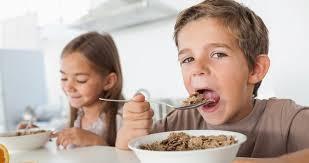 pamlsková vyhláška sokorest školní stravování