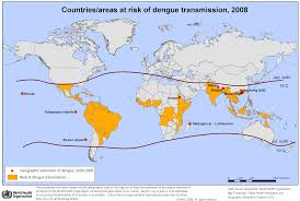 controlling dengue fever an environmental approach yale an epidemiological