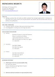 Examples Of Resumes   How Creating An Infographic Resume Helped Me     LaTeX Templates