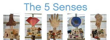 best ideas about senses nail file the five 37 best ideas about 5 senses nail file the five and preschool