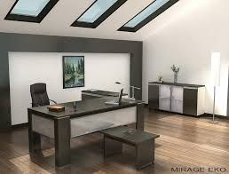 modern style elegant office decor with elegant modern office decorating ideas for men grey accents hard amazing elegant office decor