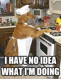 Cooking Dog memes | quickmeme via Relatably.com