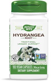 <b>Hydrangea Root</b> / 100 Caps - Nature's Way®.