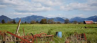 Image result for dairies in tillamook
