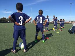 they re a success story melbourne miniroos team excelling on the they re a success story melbourne miniroos team excelling on the pitch the fawkner miniroos under 8 side are taking the melbourne little leagues by storm