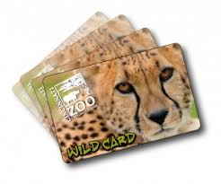 Image result for passes to the zoo