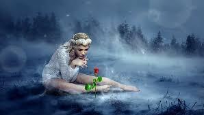 200+ Free <b>Fairy Flower</b> & <b>Fairy</b> Images - Pixabay