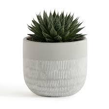 <b>Кашпо</b> из керамики, liso серый <b>La Redoute</b> Interieurs | <b>La Redoute</b>