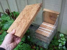 emerging in tube mason bee house top off build diy mason