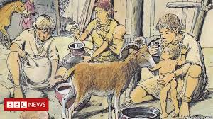Prehistoric <b>babies</b> fed animal <b>milk</b> in <b>bottles</b> - BBC News