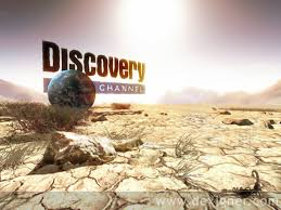Ver Canal Discovery Channel online