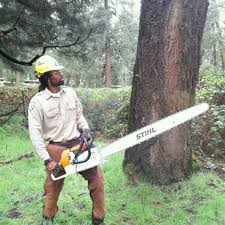 being a supervisor in the corps is almost a ministry of its own antoine chainsaw